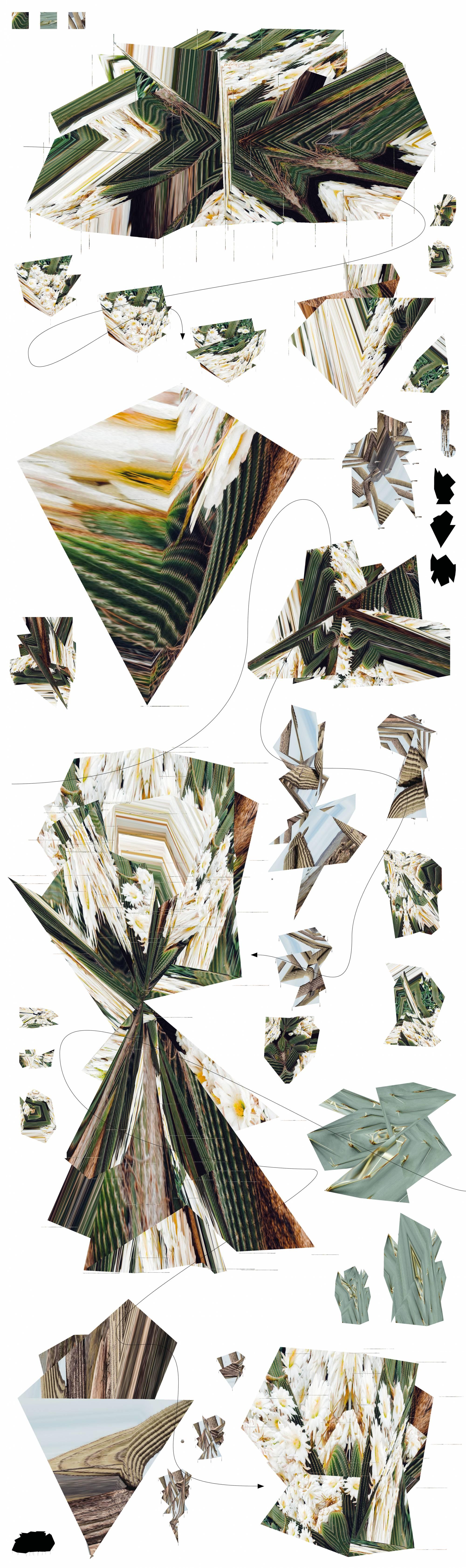 Yun Kuo / Digit-Windland /